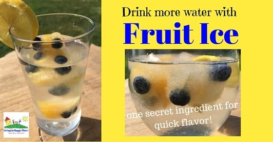 Give your water a flavor kick with fruit ice!