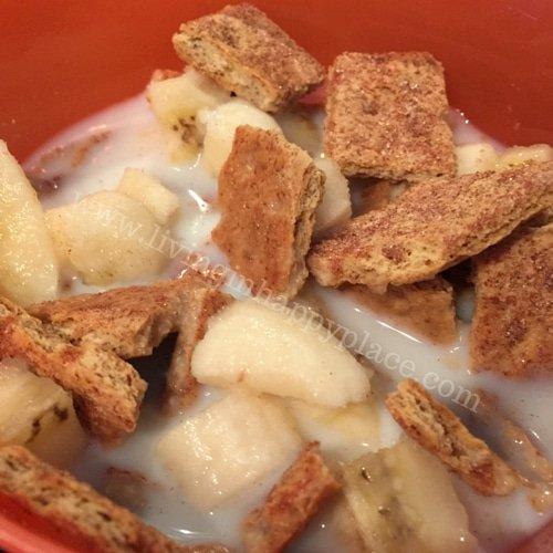 Toddler Cereal Recipe