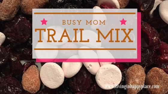 Busy Mom Trail Mix Recipe