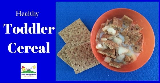 Healthy toddler cereal recipe