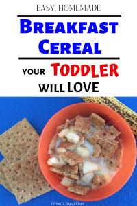 toddler breakfast idea