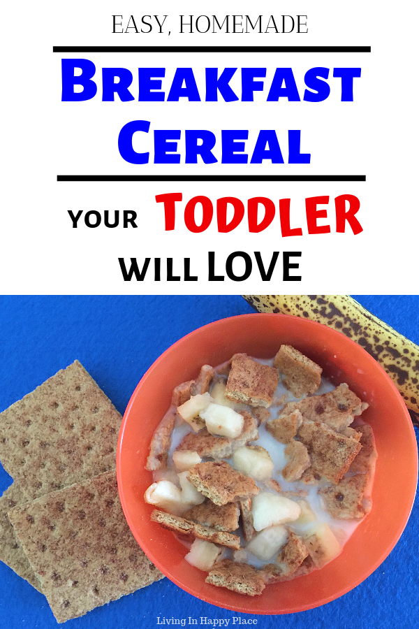 Easy and Yummy Toddler Cereal Recipe